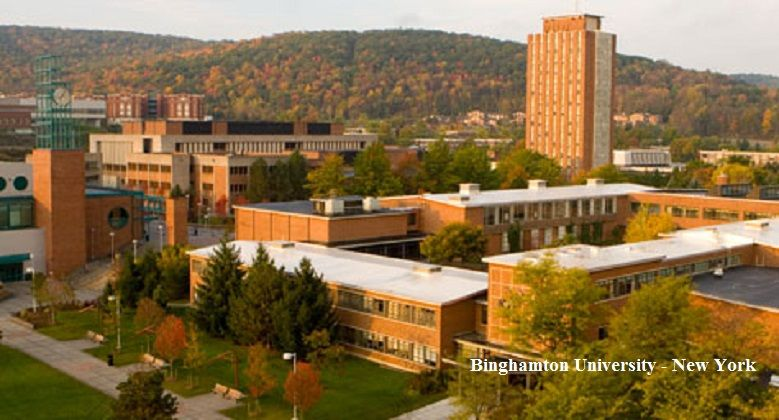 suny binghamton essay requirements  · this is transfer and admissions information for suny at binghamton students can compare college and university transfer information before changing.