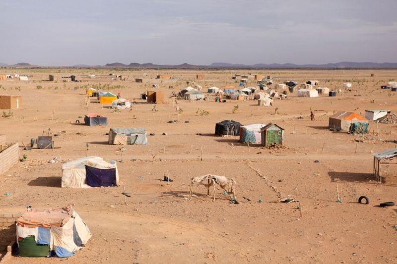 cms_1799/northafricapost.jpg