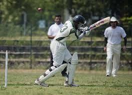 cms_274/20__cricket.jpg