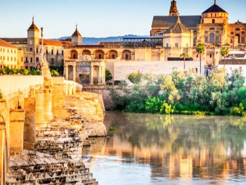 Andalusia:_l'estrema_destra_entra_in_parlamento
