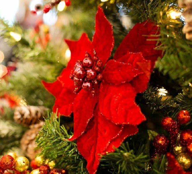 Magico_Natale