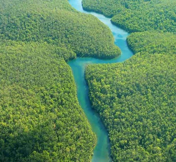 Brasile:_scoperta_una_nuova_tribù_indigena