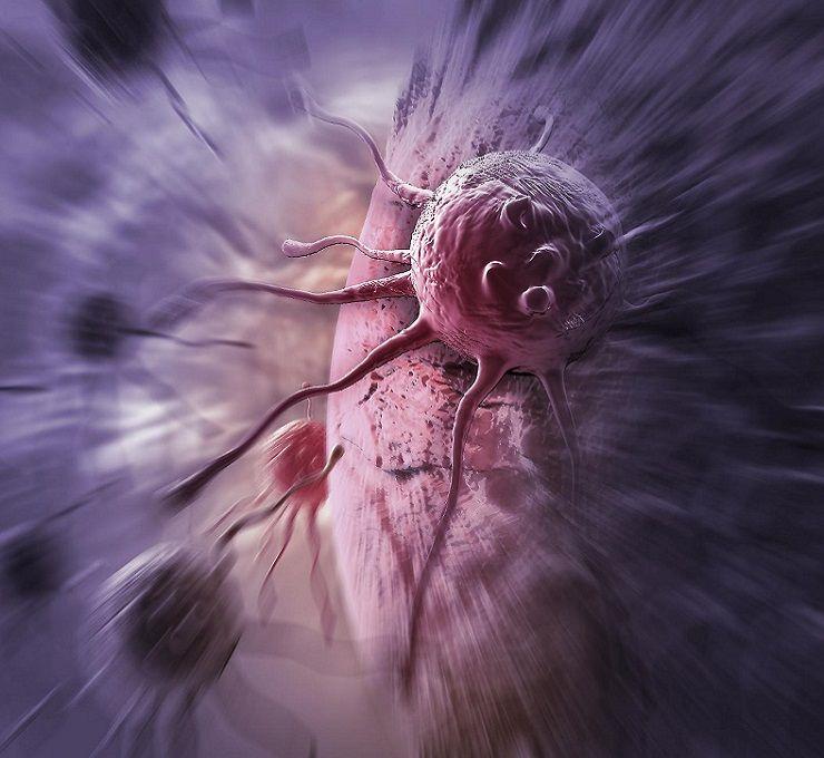 Cellulari_e_cancro,_test_sui_topi