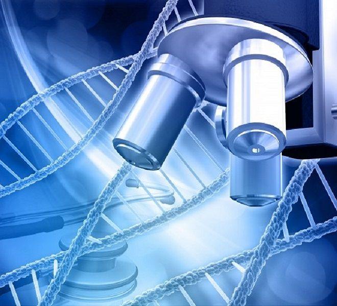 Covid,_-quot;gene_chiave_per_vaccino_scoperto_in_anticorpi_umani-quot;