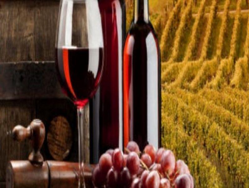 """""""I_VINI_DEL_VENTAGLIO""""__La_promozione_vitivinicola_Riparte_dal_Sud"""