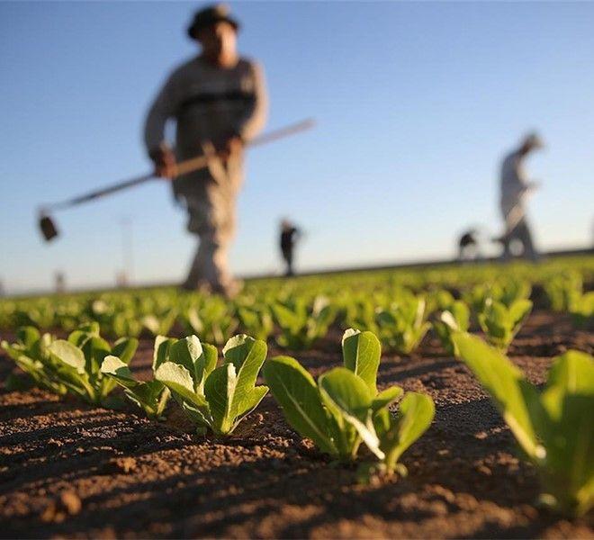 Il_suolo_ad_uso_agricolo
