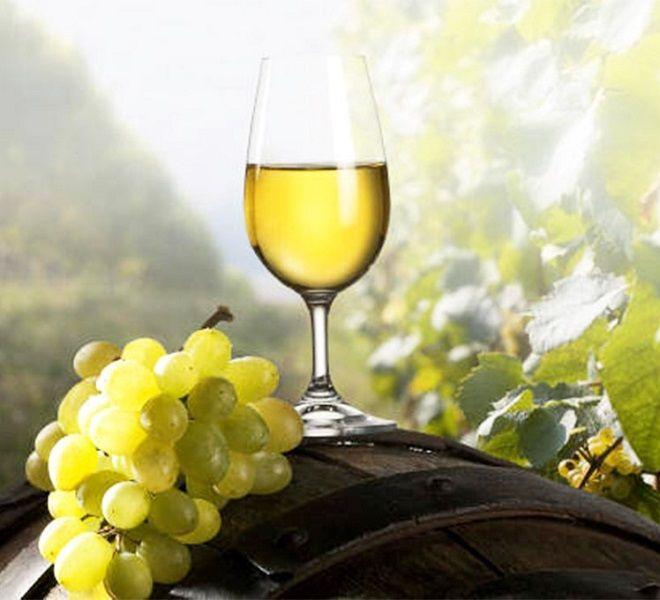 Il_vino_del_2099:_gli_impatti_del_cambiamento_climatico_sulla_viticoltura_trentina