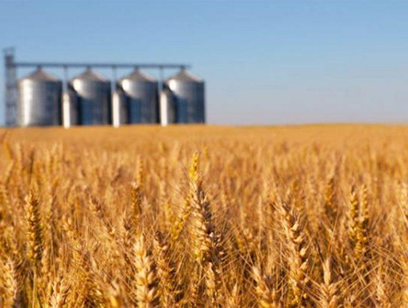 Le_aziende_agricole_in_Europa