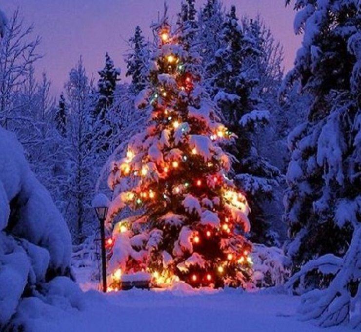Neve,_pioggia_e_freddo_per_le_feste
