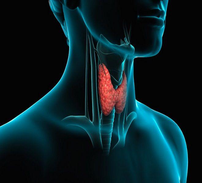 -quot;Ecco_le_nuove_tecniche_per_il_tumore_della_tiroide-quot;