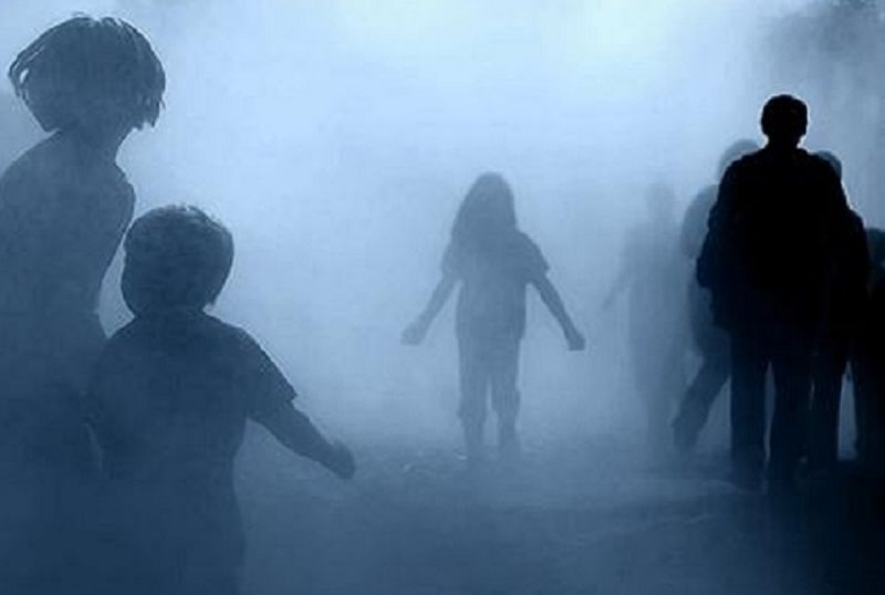 cms_10019/nebbia.jpg