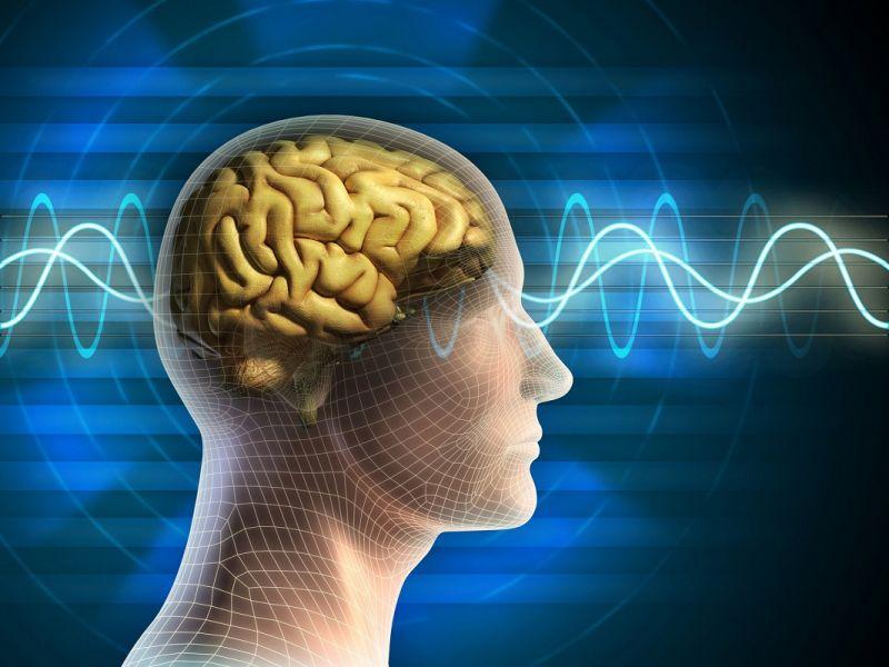 cms_638/brain-waves-SECONDOweb.jpg