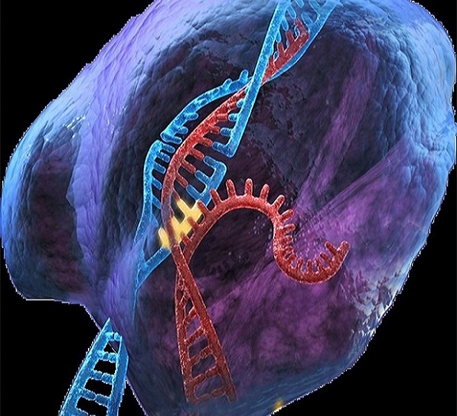 Editing_genetico_e_scienziati_alla_riscossa:_richiesta_di_moratoria