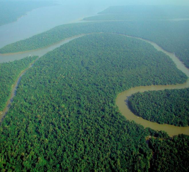 L'AMAZZONIA_EMETTE_TROPPI_GAS_SERRA