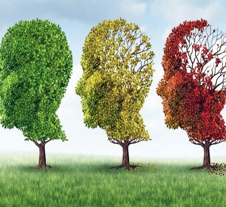 Cosa_sappiamo_dell'Alzheimer