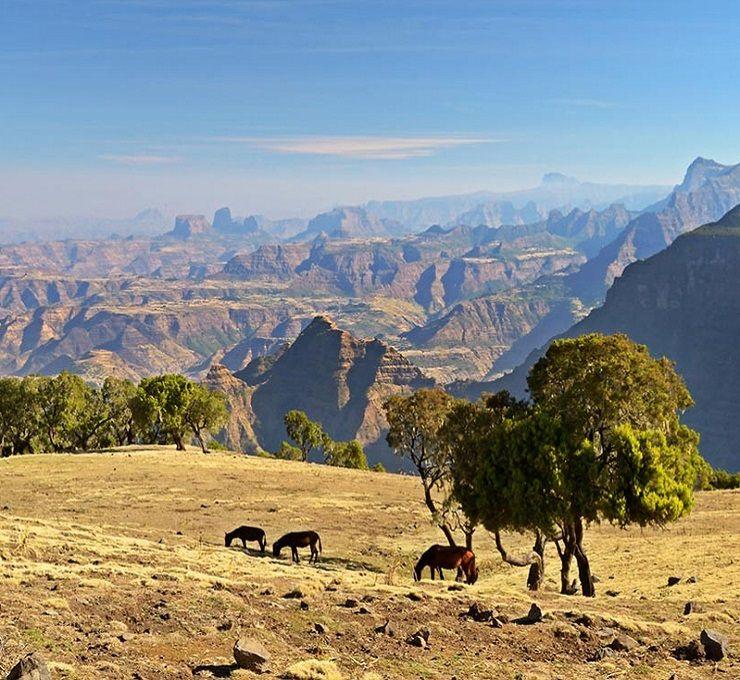 Etiopia:_quando_un_governo_cambia_(davvero)_un_Paese