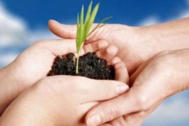 Incentivi_per_le_imprese_agricole
