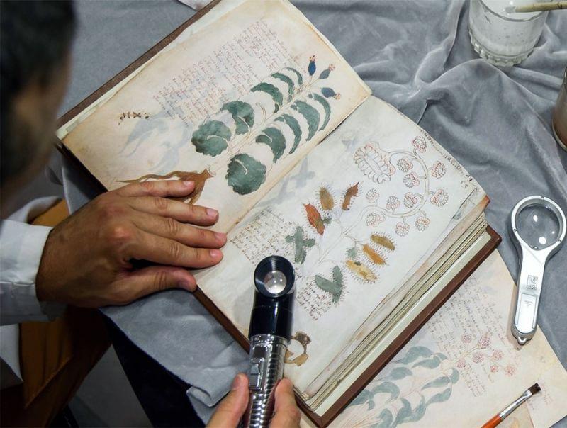 Il_manoscritto_di_Voynich