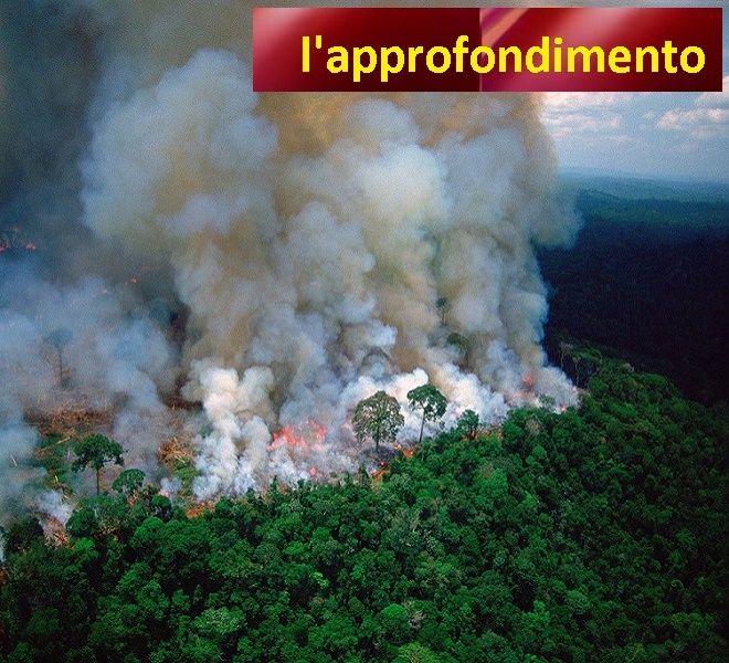 L'AMAZZONIA_BRUCIA!