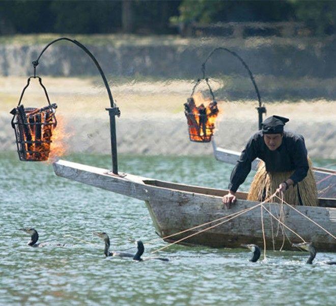 Moria_di_pesci_in_Giappone_a_causa_di_pesticidi
