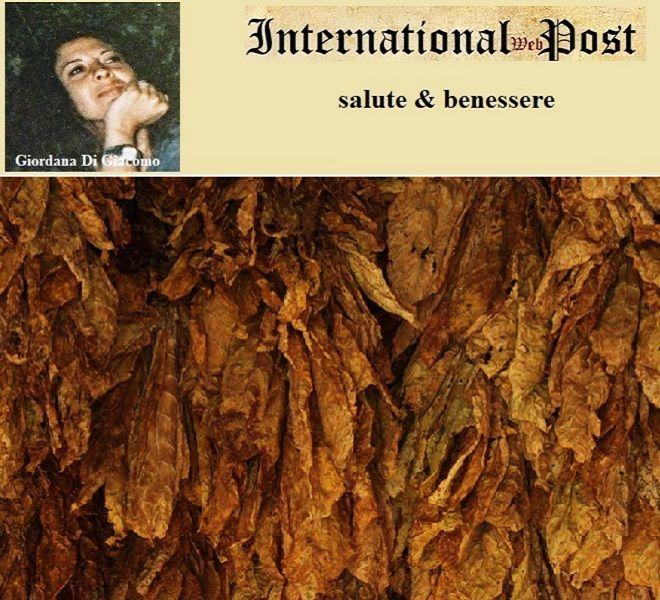 International Web Post International Web Post