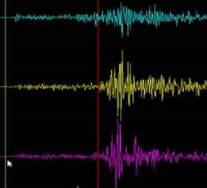 Forte_terremoto_in_Nuova_Zelanda_magnitudo__8_1_