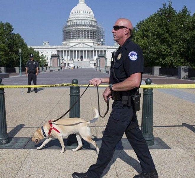 USA:_Proteste_anti-lockdown