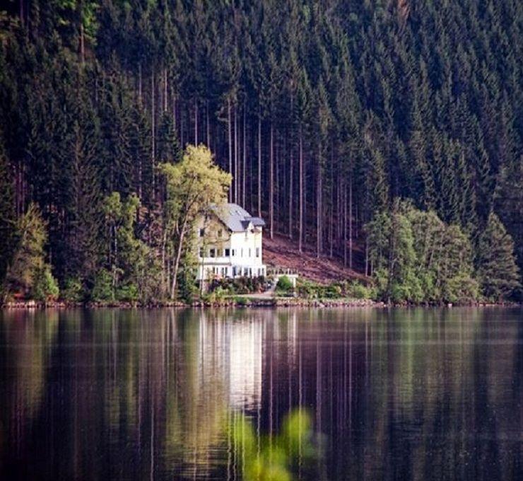 Vacanza_in_una_foresta_incantata