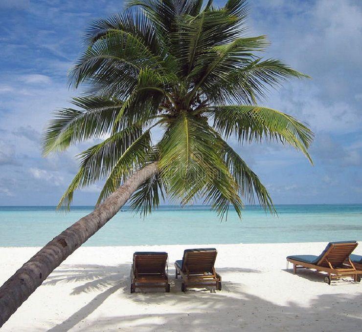 Spiagge_esotiche_e_mare_verde-blu_per_una_vacanza_al_caldo
